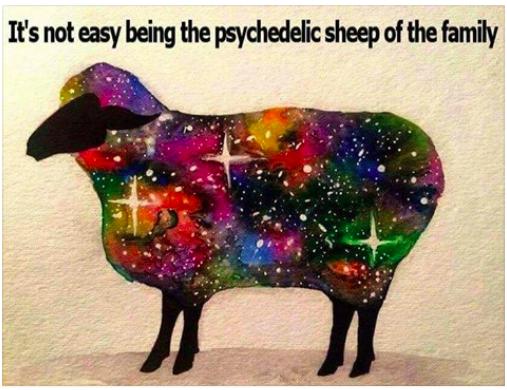 psyco-sheep-of-fam